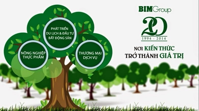 Ngành nghề chính của Bim Group Việt Nam