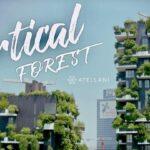 Tổng quan chung cư Sol Forest Ecopark 3