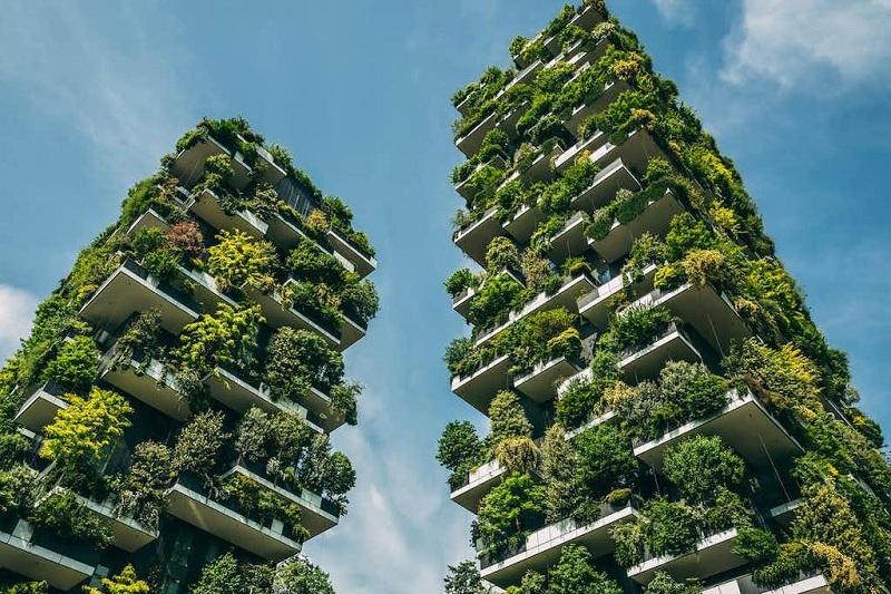 Tổng quan chung cư Sol Forest Ecopark 1