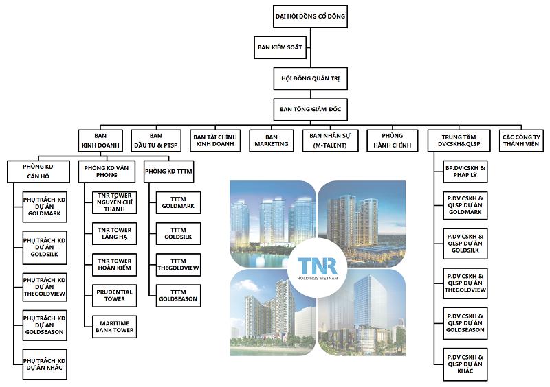 Cơ cấu tổ chức của TNR Holdings