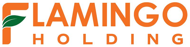 Logo Flamingo Holding Group