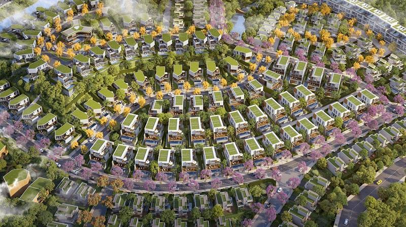 Mặt bằng thiết kế biệt thự Lương Sơn